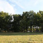 parc-clos-soucelles-salle-reception-fete-bois